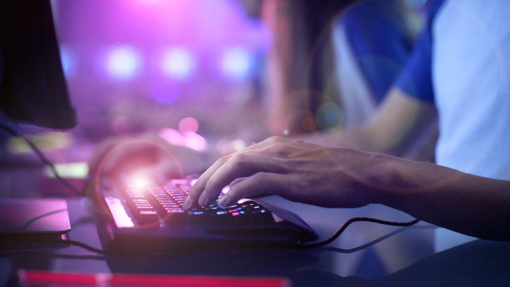 Bild: Gorodenkoff/Shutterstock.com
